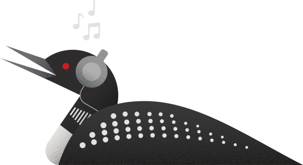 Loon with headphones on listening to music
